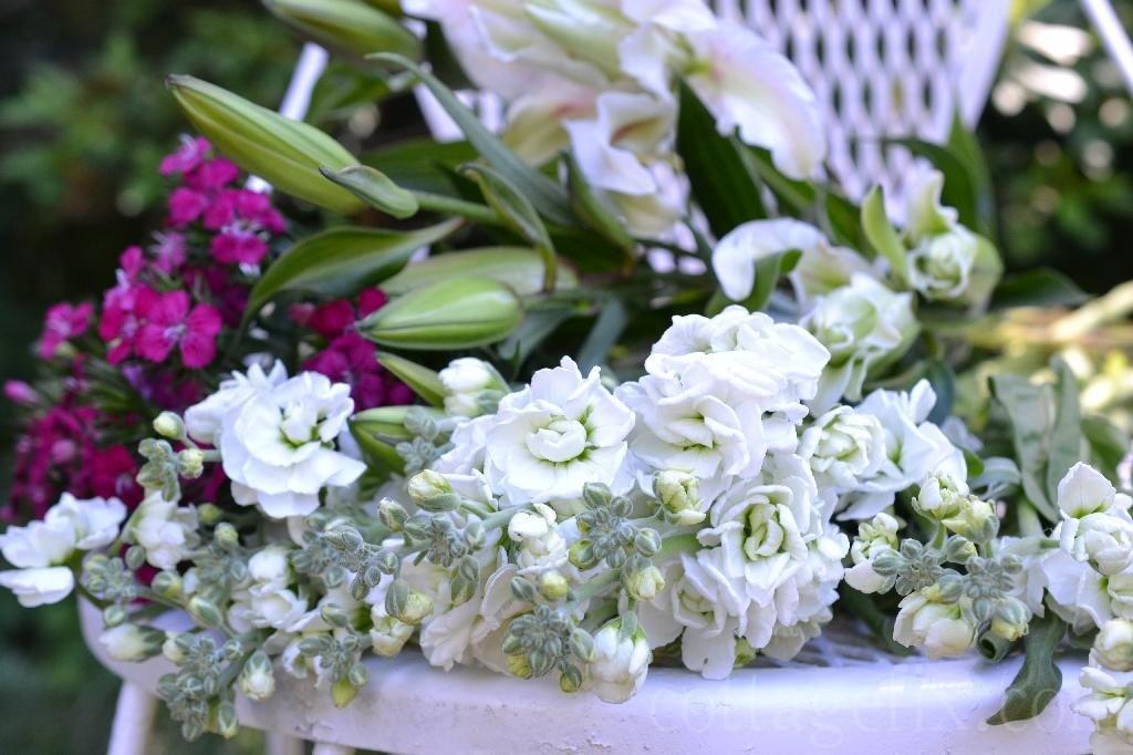 Cottage Fix blog - stock floral close up